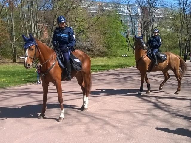 Bientôt une police équestre à Lyon !