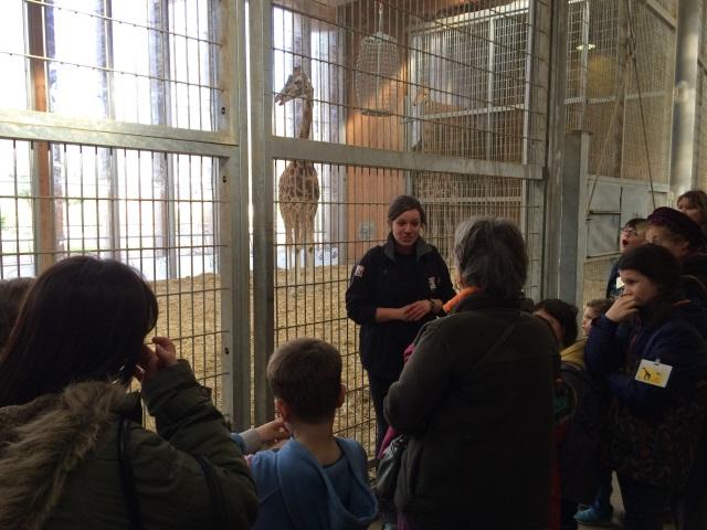 Les coulisses du zoo de la Tête d'Or se dévoilent